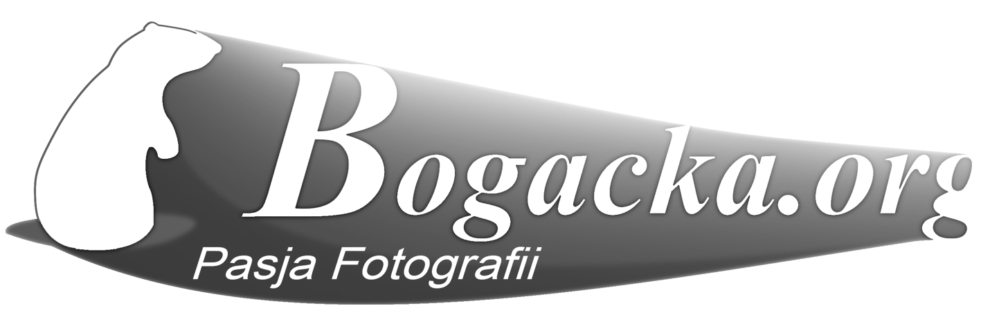 Bogacka Photography
