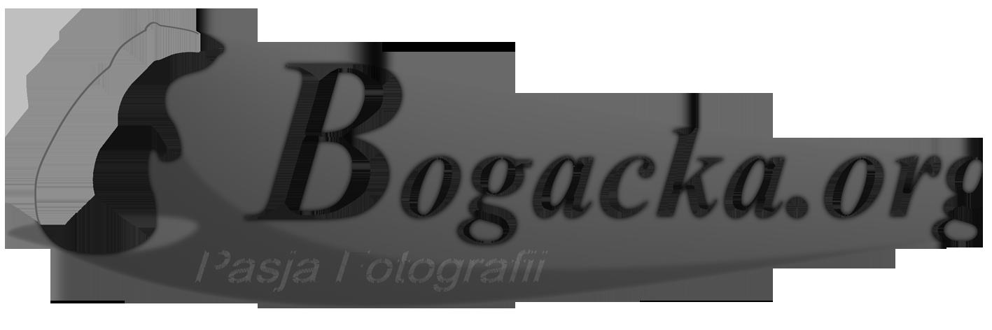 Bogacka Photography